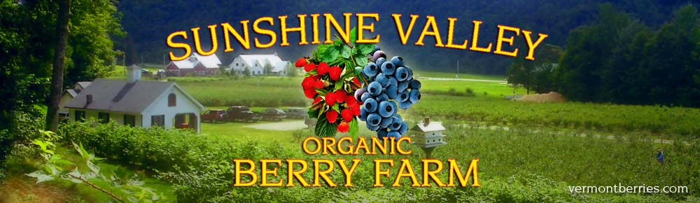 Sunshine Valley Organic Berry Farm